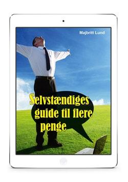Boeger-selvstaendiges-guide-til-flere-penge